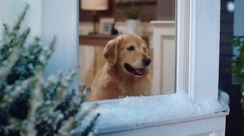 WeatherTech TV Spot, 'The Ultimate Winter Protection' - Thumbnail 3