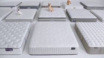 Macy's Biggest Mattress Sale of the Season TV Spot, 'Dogs' - Thumbnail 2