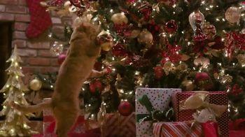 Balsam Hill TV Spot, 'Hallmark Movies & Mysteries: Christmas' - Thumbnail 3