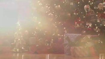 Balsam Hill TV Spot, 'Hallmark Movies & Mysteries: Christmas' - Thumbnail 7