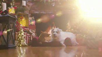 Balsam Hill TV Spot, 'Hallmark Movies & Mysteries: Christmas' - Thumbnail 8