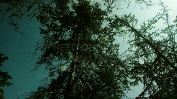 Discover the Forest TV Spot, 'Bonding and Stress-Reducing Benefits' - Thumbnail 1