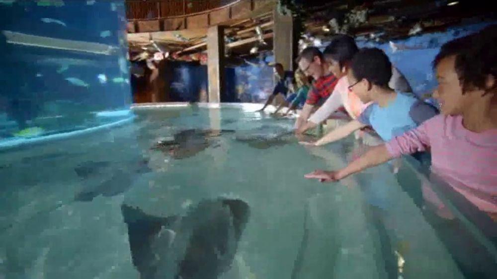 Wonders of Wildlife TV Commercial, 'Share the Wonder'