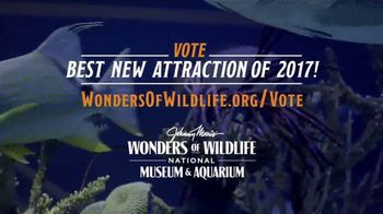 Wonders of Wildlife TV Spot, 'Share the Wonder' - Thumbnail 10