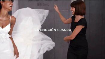 David's Bridal TV Spot, 'La emoción cuando está rebajado' [Spanish] - Thumbnail 4