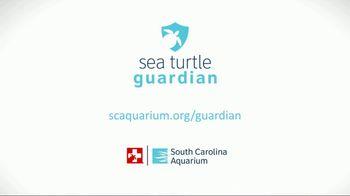 South Carolina Aquarium TV Spot, 'Become a Sea Turtle Guardian' - Thumbnail 9
