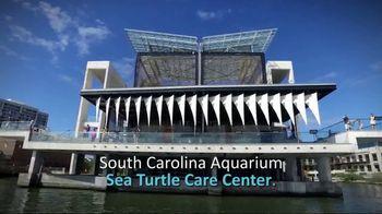 South Carolina Aquarium TV Spot, 'Become a Sea Turtle Guardian' - Thumbnail 6