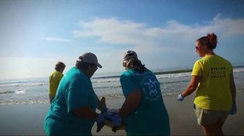 South Carolina Aquarium TV Spot, 'Become a Sea Turtle Guardian' - Thumbnail 8
