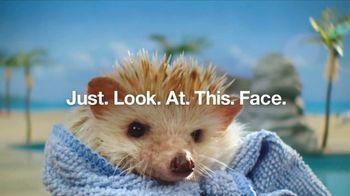Do I Have Prediabetes TV Spot, 'Risk Test Hedgehogs'