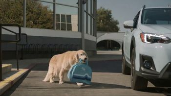 Subaru TV Spot, 'Dog Tested: Drive Away' [T1] - Thumbnail 2