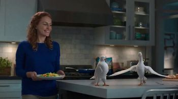 Birds Eye Voila! Skillet Meals TV Spot, 'Fifteen Minutes to Make' - Thumbnail 1