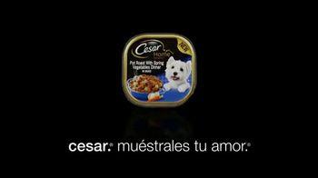 Cesar TV Spot, 'Turno nocturno' [Spanish] - Thumbnail 9