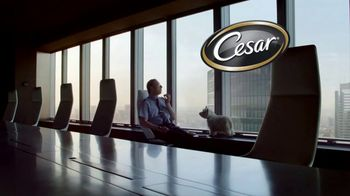 Cesar TV Spot, 'Turno nocturno' [Spanish] - Thumbnail 8