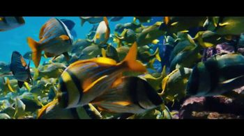 Atlantis TV Spot, 'Endless Flow: January 2018' - Thumbnail 8