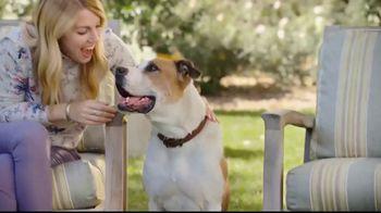 Blue Buffalo TV Spot, 'Blue Buffalo vs. Beneful Dog Food' - Thumbnail 1