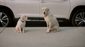 Subaru TV Spot, \'Dog Tested: Drop Off\' [T1]
