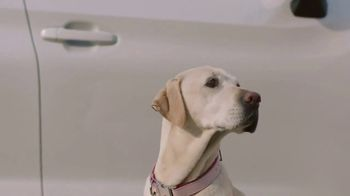 Subaru TV Spot, 'Dog Tested: Drop Off' [T1] - Thumbnail 6