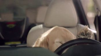 Subaru TV Spot, 'Dog Tested: Drop Off' [T1] - Thumbnail 8
