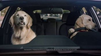 Subaru Impreza Sport TV Spot, 'Dog Tested: Driving Lesson' [T1] - Thumbnail 1