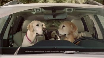 Subaru Ascent TV Spot, 'Dog Tested: Car Wash' [T1] - Thumbnail 2