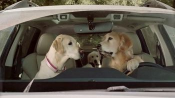 Subaru Ascent TV Spot, 'Dog Tested: Car Wash' [T1] - Thumbnail 9