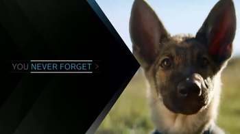XFINITY On Demand TV Spot, 'A Dog's Purpose' - Thumbnail 6