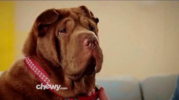 Chewy.com TV Spot, 'Chewy Customer Service Testimonials' - Thumbnail 2