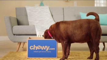 Chewy.com TV Spot, 'Chewy Customer Service Testimonials' - 380 commercial airings