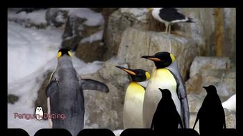 iSpot.tv TV Spot, 'Penguin Dating' - Thumbnail 1