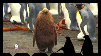 iSpot.tv TV Spot, 'Penguin Dating' - Thumbnail 3