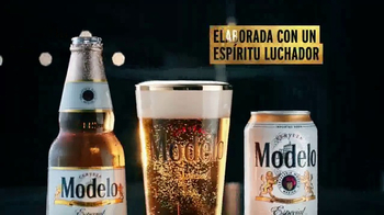 Modelo Especial TV Spot, 'La lucha por la cerveza' [Spanish] - Thumbnail 4