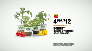 The Home Depot TV Spot, 'Hierbas y vegetales' [Spanish] - Thumbnail 6