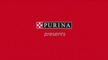 Purina TV Spot, 'Beverly Hills Dog Show' - Thumbnail 1