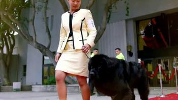 Purina TV Spot, 'Beverly Hills Dog Show' - Thumbnail 4