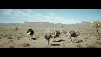 Samsung Gear VR TV Spot, 'Ostrich' Song by Elton John - Thumbnail 5
