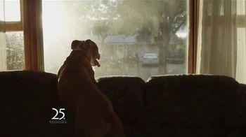 Budget Blinds 25th Anniversary Sale TV Spot, 'Lots of Reasons' - Thumbnail 6