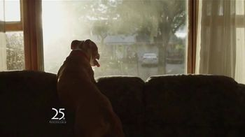 Budget Blinds 25th Anniversary Sale TV Spot, 'Lots of Reasons'