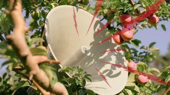 Angry Orchard Crisp Apple TV Spot, 'Peak Freshness' - Thumbnail 3