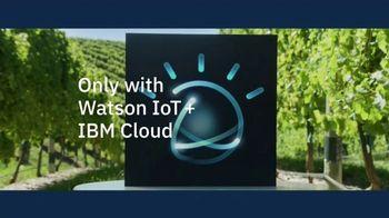 IBM Watson TV Spot, 'Watson at Work: Wine' - Thumbnail 8