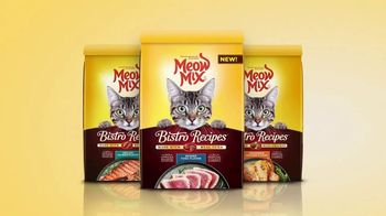 Meow Mix Bistro Recipes TV Spot, 'Painting' - Thumbnail 6