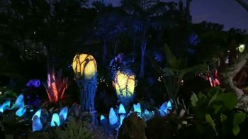 Walt Disney World TV Spot, 'Disney 365: Pandora' - 153 commercial airings