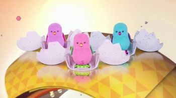 Little Live Pets Surprise Chick TV Spot, 'Nickelodeon: Waiting to Hatch' - Thumbnail 2