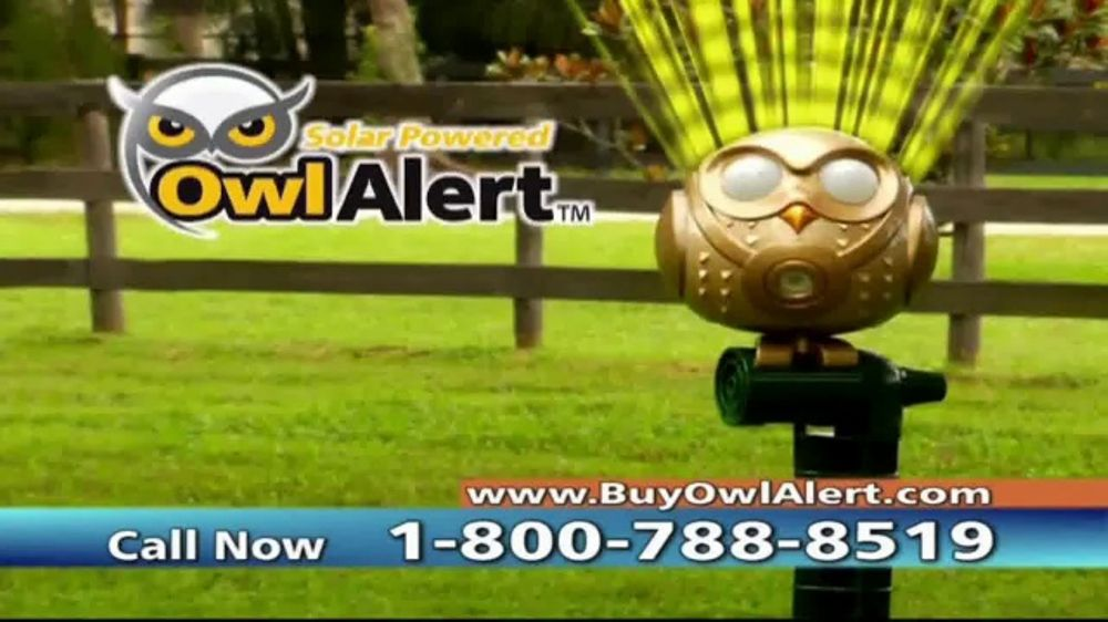 Owl Alert Tv Commercial Animal And Bird Repeller Ispot Tv