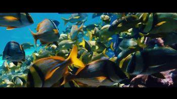 Atlantis Winter Bed & Breakfast Offer TV Spot, 'Bahamas at Heart: January' - Thumbnail 5