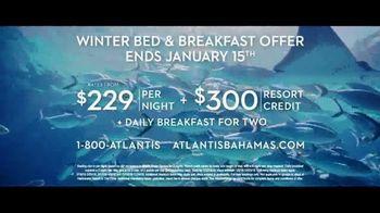 Atlantis Winter Bed & Breakfast Offer TV Spot, 'Wide Awake: January' - Thumbnail 9