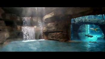 Atlantis Winter Bed & Breakfast Offer TV Spot, 'Wide Awake: January' - Thumbnail 2