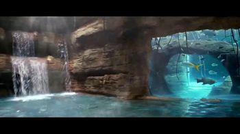 Atlantis Winter Bed & Breakfast Offer TV Spot, 'Wide Awake: January' - Thumbnail 3