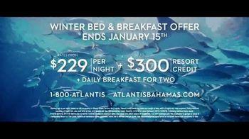 Atlantis Winter Bed & Breakfast Offer TV Spot, 'Wide Awake: January' - Thumbnail 8
