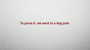 Nature's Miracle Stain & Odor Remover TV Spot, 'Pee in the Park' - Thumbnail 2