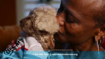 Humane Society TV Spot, 'Animal's Can't Speak Up' - Thumbnail 6
